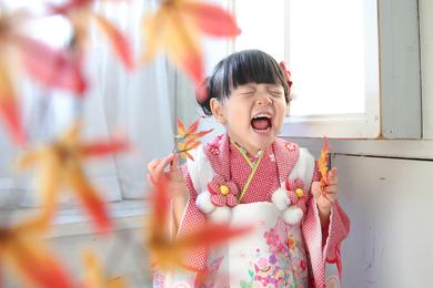 表参道店 / Small house / 女の子 / 七五三