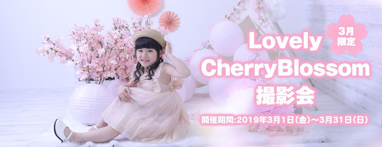 Lovely CherryBlossom撮影会